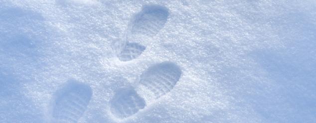 Хруст снега под ногами