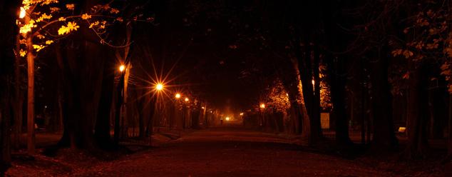 Звуки ночи