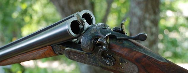 Звуки ружья