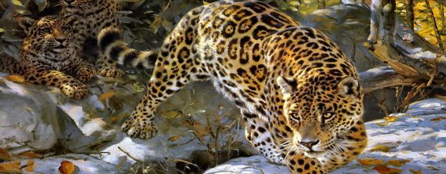 Звуки ягуара