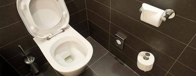 Звуки туалета
